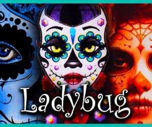 Concentré ladybug